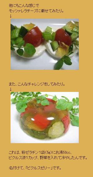 男の料理、ピクルス作り!!|癒し・感動・学び!ストリートダンス日記