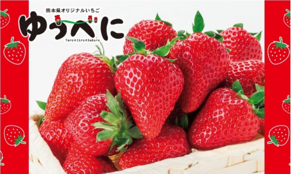 熊本産のイチゴ「ゆうべに」って?アレンジレシピも紹介!【体験レポート】