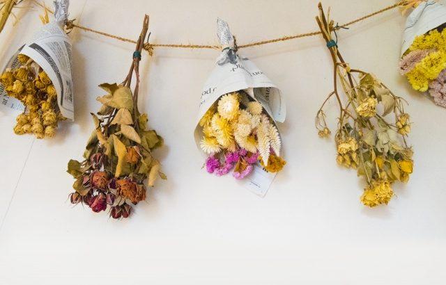 【簡単】ドライフラワーの作り方|向いているお花・飾り方